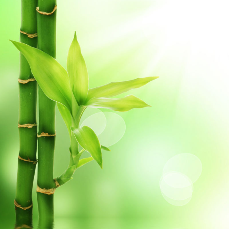 Enhance your Massage or Spa Business with Feng Shui