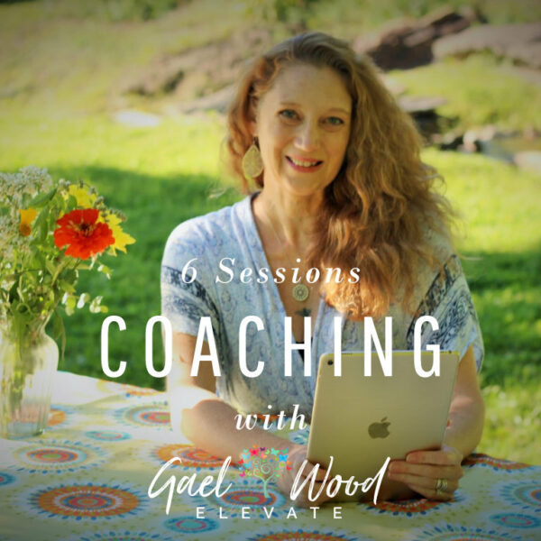 Coaching with Gael Wood 6 sessions